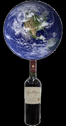 Earth on Bottle
